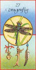 dragonflymedicinecards