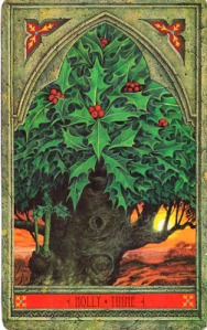 Holly, Green Man Tree Oracle